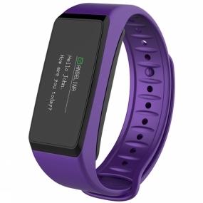 Activity Tracker Zefit2 Pulse