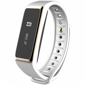 Activity Tracker ZeFit 2
