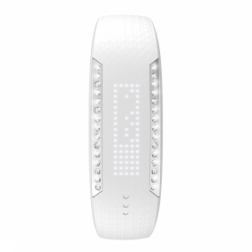 Activity Tracker Loop Crystal