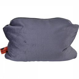 Pillow 2 in 1